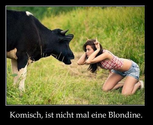 ist-nicht-mal-eine-blondine
